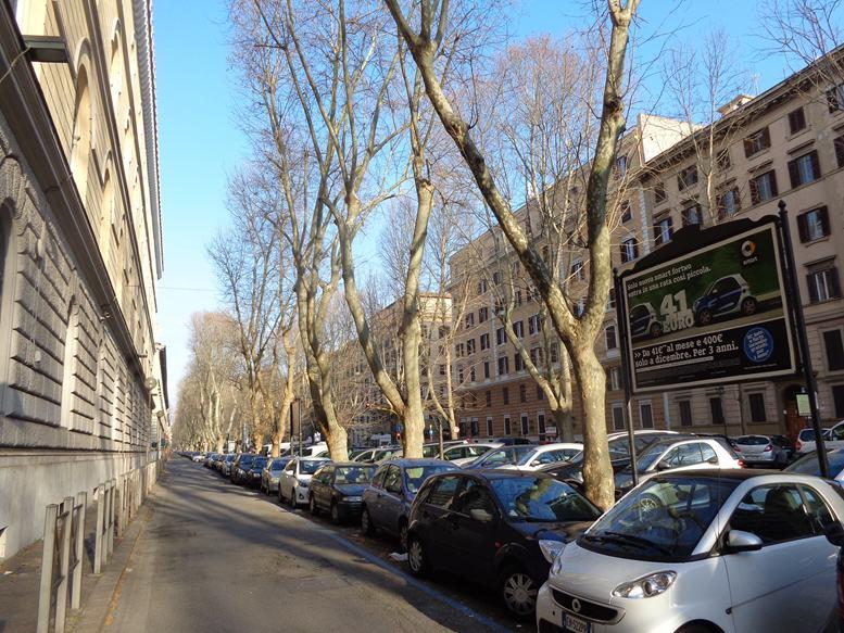GREGOR 432 Viale Giulio Cesare altezza civ. 97 altezza Via Caio Mario