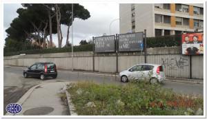 pineta sacchetti c.314
